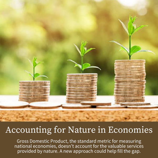 Accounting for Nature in Economies; Gross Domestic Product, the standard metric for measuring national economies, doesn't account for the valuable services provided by nature. A new approach could help fill the gap.