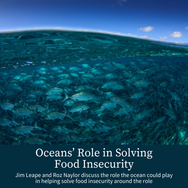 Oceans' Role in Solving Food Insecurity; Jim Leape and Roz Naylor discuss the role the ocean could play in helping solve food insecurity around the role