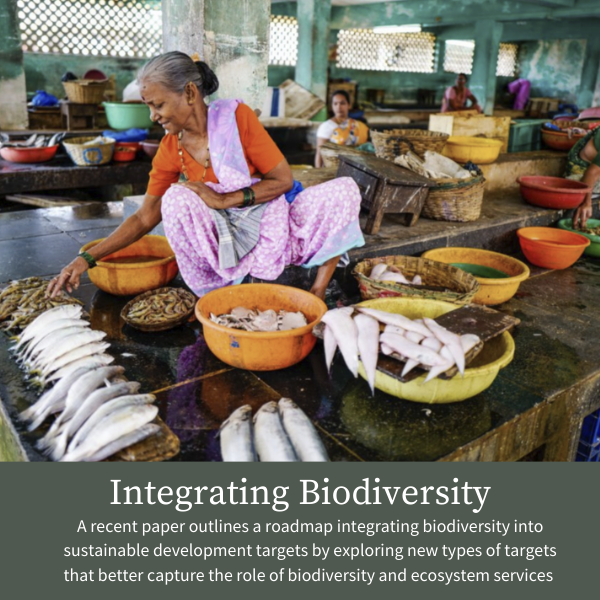 Integrating Biodiversity; A recent paper outlines a roadmap integrating biodiversity into sustainable development targets by exploring new types of targets that better capture the role of biodiversity and ecosystem services
