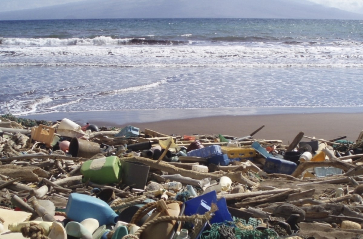 Plastic waste on a beach in Hawaii