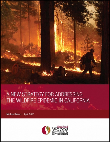 cover of new strategy white paper