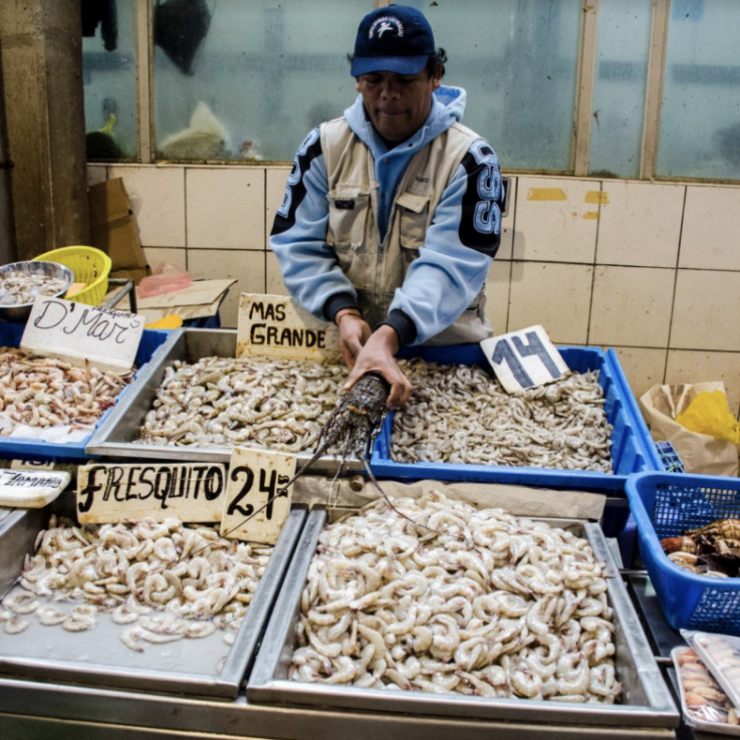 a man stands behind buckets of seafood at a market