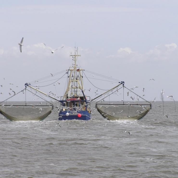 crab fishing ship