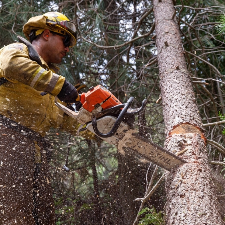A crew member from National Guard uses a chain saw to clear debris from a forest in Shaver Lake, California.