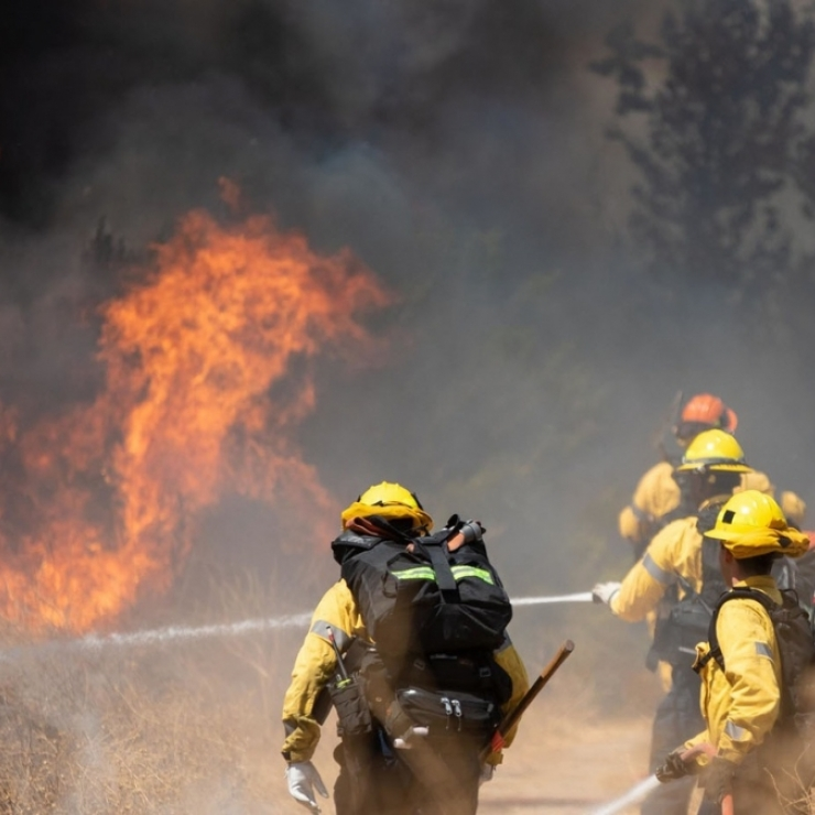 Firefighters attempt to put out a wildfire in Sepulveda Basin in California