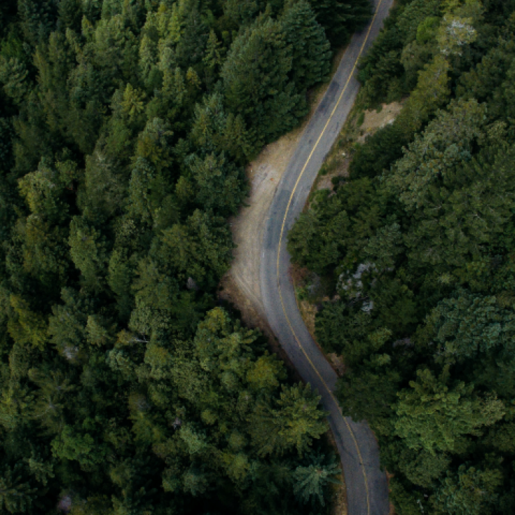 a road winds through a forest