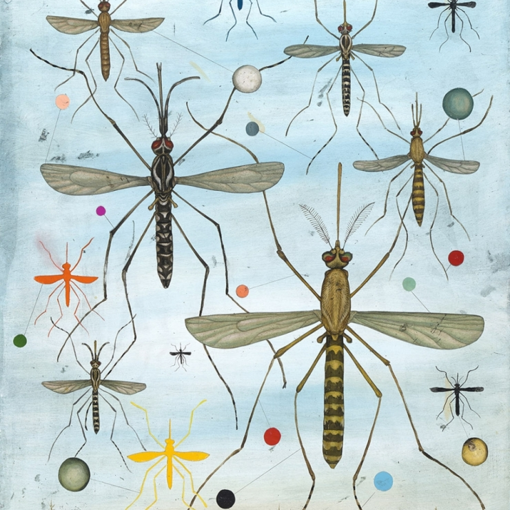 illustration of mosquitoes