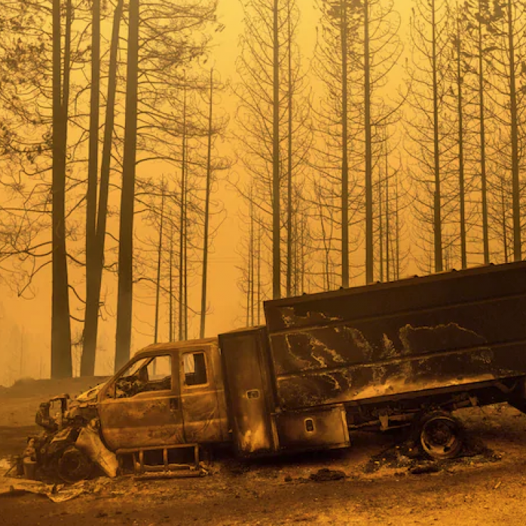 A burnt truck sits in a forest with an orange smoky sky